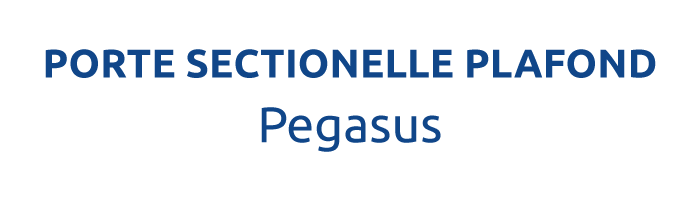 LA PORTE SECTIONNELLE PLAFOND PEGASUS